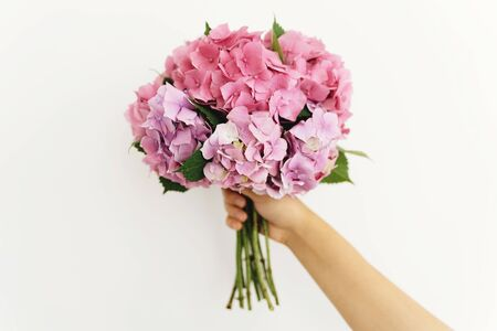 Hydrangea bouquet in woman hand on background of white wall. Hand holding pink and purple hydrangea flowers. Happy mothers day or womens day. Wedding floristics