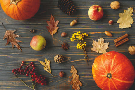 Pumpkins, autumn leaves, apples, anise, cones, acorns and berries on dark wooden background. Happy Thanksgiving greeting card. Fall harvest on rustic wood flat lay.