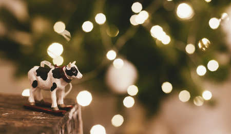 Happy New Year 2021 ! Cow or bull toy on background of beautiful christmas tree lights bokeh, space for text. Cute cow figurine decor on christmas tree, symbol of new year 2021 Imagens