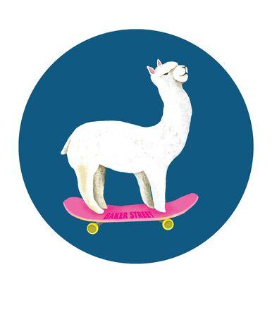 skateboard Фото со стока