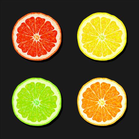 Segments of orange, lemon, lime, grapefruit. Juicy citrus fruit on a black background. Set of citrus fruit. Fruit slices. Vector illustration