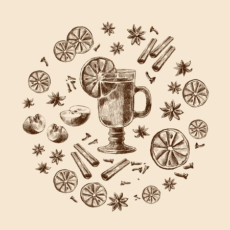Mulled wine. Wine and spices, orange, apple, cinnamon, carnation, anisetree. Hand drawing, Vector illustration