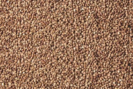 Buckwheat background. Grain brown background.Texture grain. Food background