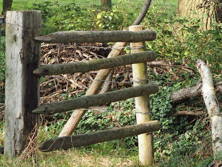 wood agricultural: fence to a meadow Stock Photo