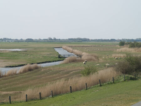 yachtsman: Braak water in the dike hinterland of the North Sea Stock Photo