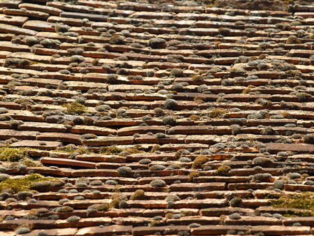 inclination: Shingle roof according to ancient tradition, UK