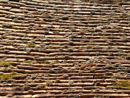 ancient tradition: Techo de tejas seg�n la antigua tradici�n, Reino Unido