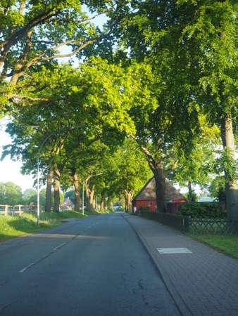 lonley: lonley street in the landscape