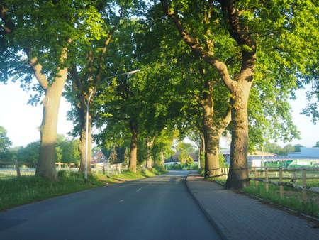 lonley: lonley street in the morning Stock Photo