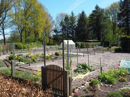 view in neighbors garden