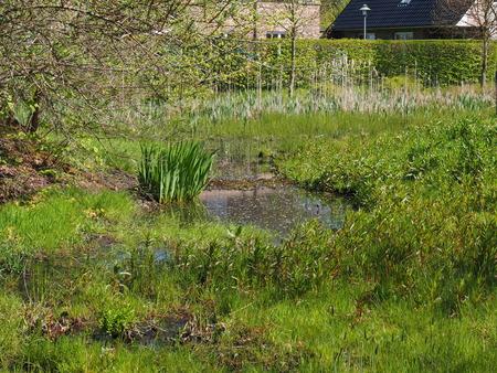 basins: rain retention basins in the nature Stock Photo