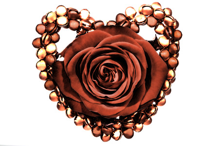 Real red rose framed by a heart of bells as a decoration for valentines or for a bride or wedding anniversary etc.
