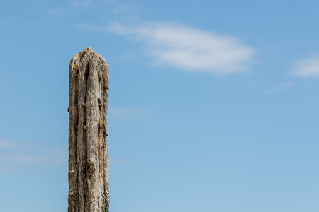 Age and decay. Rotten wood fence post. Decayed eroded and rotting wooden construction isolated against blue sky with copy space. Symbol of old age and decomposition. Stock Photo