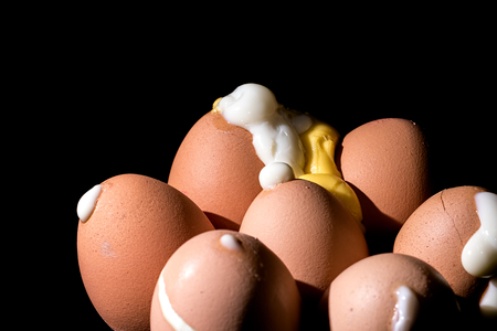 Hard boiled eggs erupted from shells. Seven pierced cooked eggs. Close up of exploded egg whites and yolk against black background.