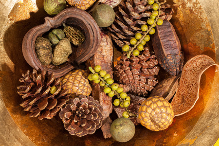 Christmas potpourri table decoration. Traditional xmas pinecone and berries centrepiece. Golden brown seasonal festive display.