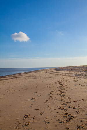 Simple beach background image. Single fluffy white cloud in blue sky. Quiet dog walk footprints in the sand. Foot and paw prints on quiet beach.