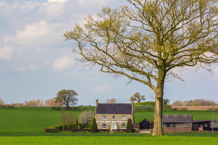 English country cottage farmhouse. Idyllic secluded countryside farm house building in a field under a tree. Beautiful picture book home.