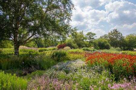 Paysage de jardin de campagne d'été. Scène horticole pittoresque colorée avec de belles fleurs, des arbres verts et des plantes. L'art du jardinage.