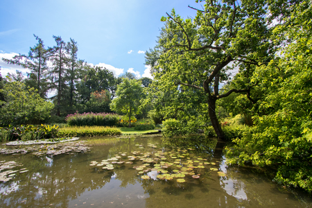 Idyllic picturesque English countryside landscape. Beautiful pond on a summers day. Lush green foliage and still water with fish and lilly pads. Gorgeous trees and garden flowers. Stockfoto