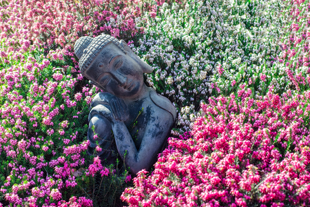 Peaceful garden. Traditional serene buddha statue ornament with beautiful flowers. Mindful serenity and nature in this calming image portraying tranquility and mindfulness in zen meditation. Standard-Bild - 123443488