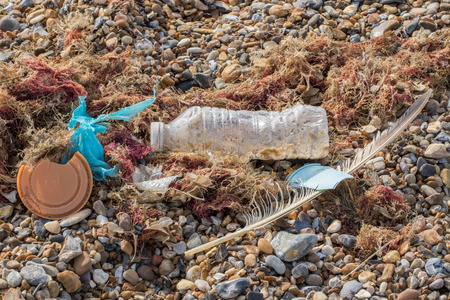 Marine pollution. Plastic bottle cup and bag mixed with nature washed up on beach. Feather and seaweed representing the natural world within this genuine example of human refuse on the UK shore. Standard-Bild - 123443501