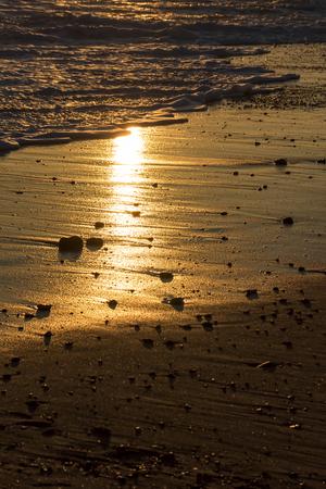 Beach vacation. Romantic evening sunlight reflecting off sand. Dawn or dusk twilight on a tropical island paradise, shoreline. Selectove focus on pebbles and reflection. Standard-Bild - 123443502