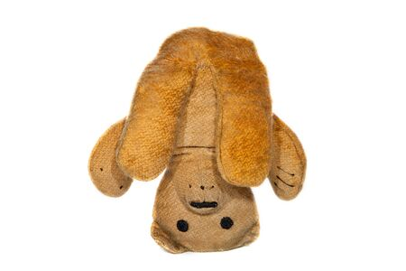Yoga pose. Vintage teddy bear doing a headstand. Cuddly toy standing on its head. Funny meme image of yogi sirsasana head stand against white background.