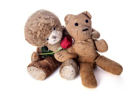Valentines day. Vintage Teddy lovers with red rose. Wedding anniversary or valentine card image of cute old aged teddies in love. Grandparents in love. Isolated on white background.