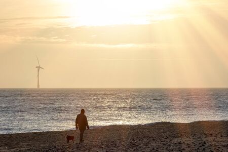 Healthy lifestyle. Peaceful beach dog walk at sunrise. Man and his dog on a beautiful winter morning. Banco de Imagens