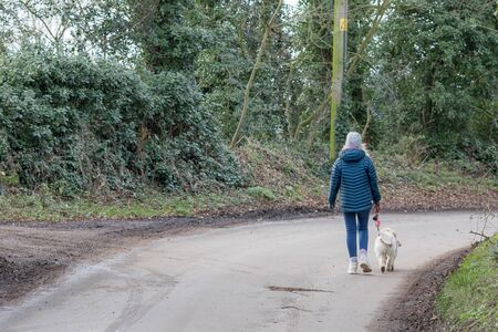 Dog walker alone on quiet country lane. Walking on the road. Single female in winter coat with dog on a lead from behind. Walking away in the countryside. Banco de Imagens