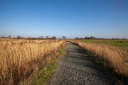 Secluded rural countryside landscape. Gravel path through agricultural fields. Country lane in East Anglia UK.