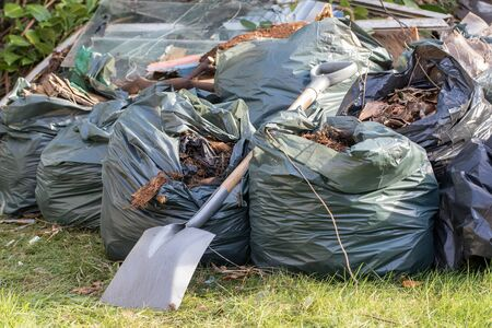 Garden rubbish in refuse sacks stored during covid19 coronavirus lockdown isolation. Bin bags mounting up on lawn after green waste collection suspension. Spring outdoor tidy up with spade. Stock Photo