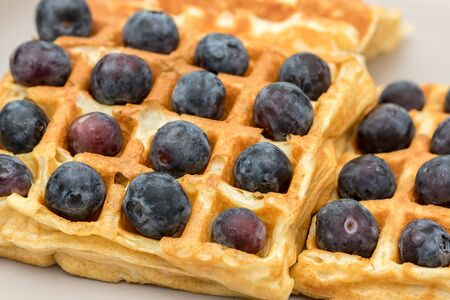 Blueberry waffles. Close up of a vegetarian superfood. Healthy sweet fruit dessert with organic blueberries in a plain pancake waffle. Abstract food pattern background image.