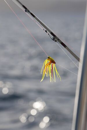 Fishing lure hangs off the side of a boat