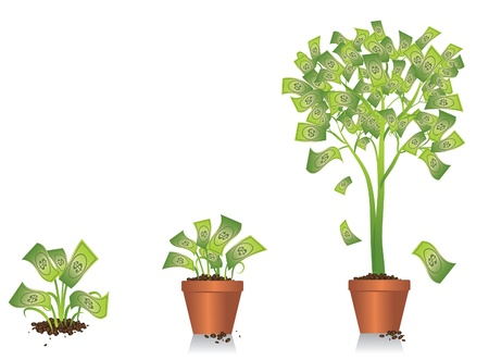 sowing: Money Tree Growing Illustration