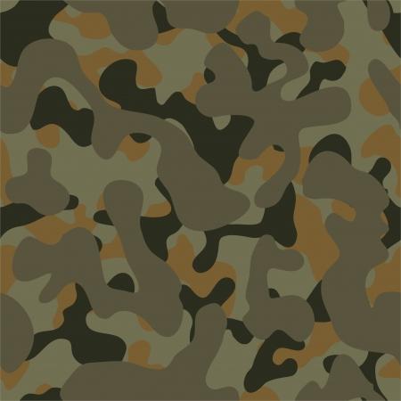 amazon rainforest: Camouflage