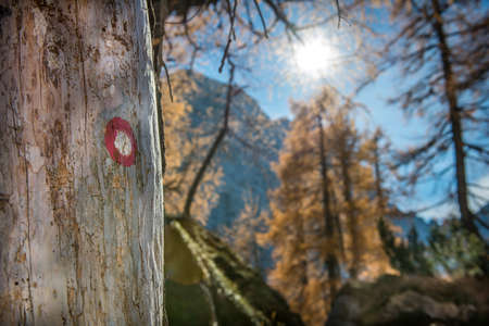 White Red hiking path marker in forrest - mountain path photo