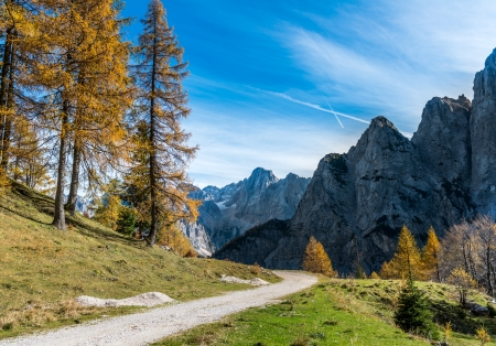 Panorama of Forest Road, Júliai-Alpok - Prisojnik és pik a háttérben, Szlovénia, Európa