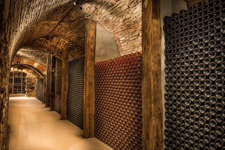 rose wine: Wine cellar, a row of champagne bottles