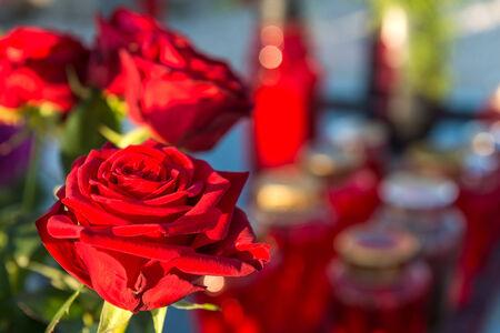 Memorial Day - gyertyák és virágok Stock fotó