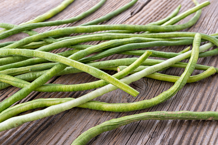 long bean: Yardlong Bean, organic long bean Yardlong bean is also known as the long-podded cowpea, asparagus bean, snake bean, or Chinese long bean Stock Photo