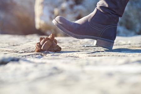 Stepping into a dog crap Standard-Bild