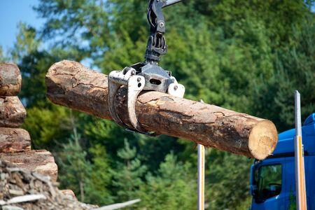 Heavy lifting crane loading cut wooden logs