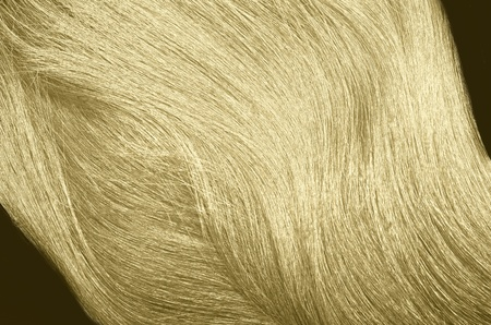 hairs of blond on a black background photo