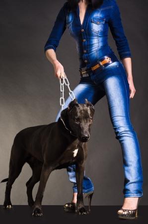 overol: Perro en una cadena que mantiene a una mujer en ropa de mezclilla