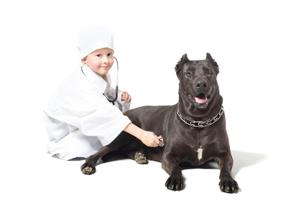 Little boy dressed as doctor listens dog stethoscope photo