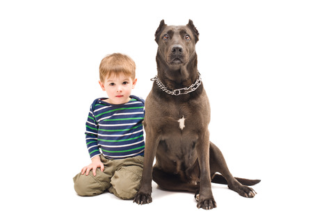 Cute boy and big dog sitting together photo