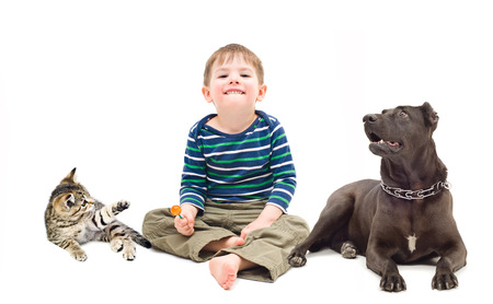 Boy, dog and kitten sitting together isolated on white background photo