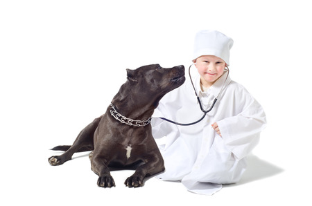 Child vet listens to a stethoscope dog photo
