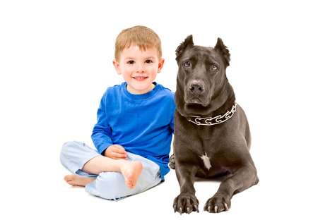 brown and black dog face: Portrait of cute boy sitting with a dog isolated on white background
